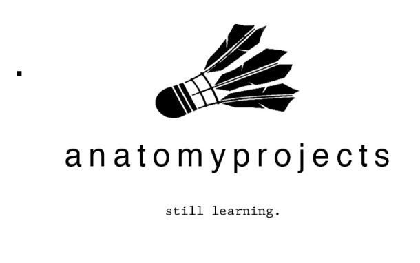 9.17.14 Anatomy Projects 2
