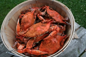"""Crabs in a Barrel"""