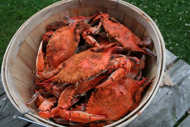 4.4.16 Crabs